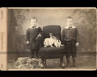 Wonderful Cabinet Card Iowa Boy with Pet Rabbits - Partially Hidden Father