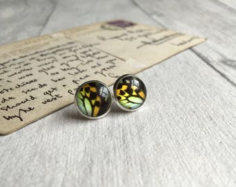 Colourful butterfly post earrings, butterfly stud earrings, insect jewellery, glass jewelry, bug earrings, boho jewelry, teen, student gift