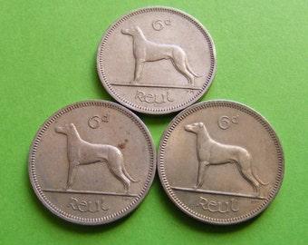 Three Authentic Vintage Irish Wedding Sixpence Coins 1964 1967 1968 Ireland Wolfhound Dog Celtic Harp Lucky