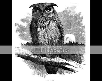 Instant Digital Download, Vintage Victorian Era Graphic, Antique The Owl Engraved Book Plate, Printable Image, Scrapbook, Halloween