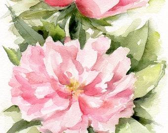 peonies, Original watercolour painting, peony painting, light pink peonies peony flower, garden peonies, flower painting, flower watercolour