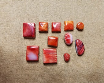 55% OFF Red and Orange Spiny Oyster Shell Freeform Circle Square Cabochons/ Seconds/ backed