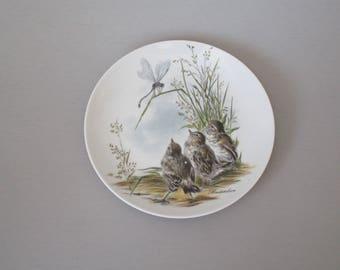 Plate with Birds, Bird decor, porcelain bird plate, W. German plate, Kaiser W Germany plate, Bachstelxen plate, bird gift, vintage plate