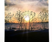 Photo Postcard - Sunset through the Sumacs
