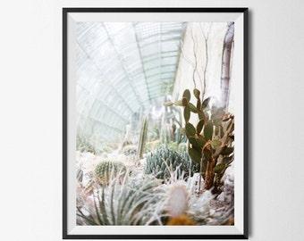 Cactus Greenhouse Print - Aqua Blue Art, Greenhouse Art Print, French Greenhouse, Cactus Art Print, Boho Wall Art, Modern Wall Art