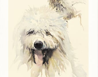 white Komondor Hungarian sheep dog long haired breed portrait vintage print illustration gift for dog lover owner by Willy E. Bär 8x11.5 in