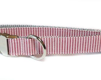 Red Seersucker Striped Dog Collar, preppy, metal hardware