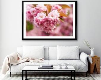 Photography + Photo Frame - Cherry Blossom - Montmartre - Paris - France