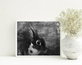 Rabbit print nursery - Farmhause wall decor - Bunny print - Cottage wall art, PRINTABLE, downloadable artwork, black white prints 8x10 print