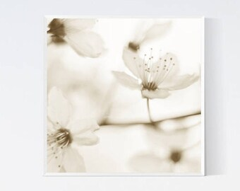 Beige wall print - Cherry blossom art print - Japanese wall decor - Printables - Photography - Boho art - 12x12 art prints, downloadable