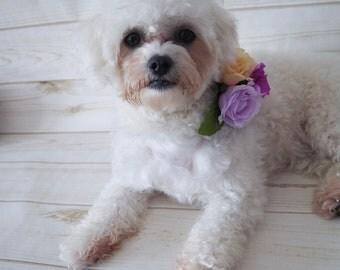 Pet Wedding, Dog Wedding, Dog flower collar, Flower dog collar, Wedding dog collar, Dog wedding collar, Dog wedding crown, Dog flower crown
