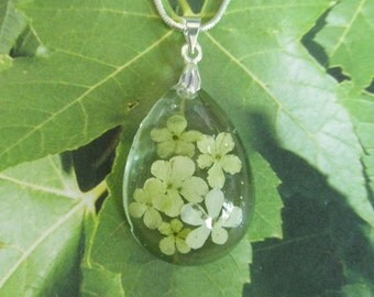 Soft Lime Green Snowball Bush Blossoms Encased In Glass Pressed Flower Teardrop Pendant-Gifts Under 32-Symbolizes Thoughts of  Heaven