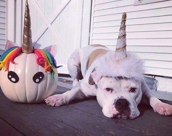 Dog unicorn