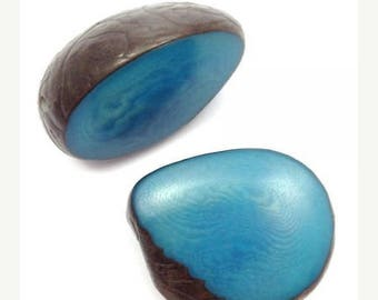 SALE 10% OFF Tagua disc Pearl, turquoise, 30-50 mm, 1 piece