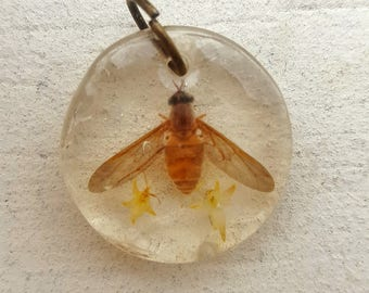 Flower Fly Taxidermy Resin Pendant