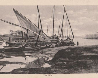 FREE POST - Old Postcard - EGYPT Nile River Scene - Vintage Postcard - Unused