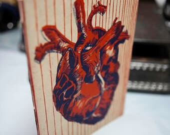 The anatomical heart booklet