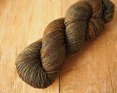 Polwarth 8ply hand dyed yarn Touch the Earth