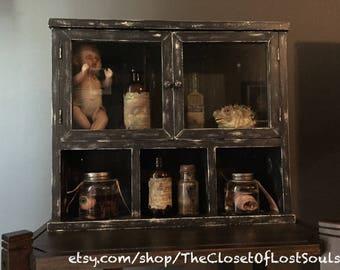 Oddities and Curiosities Cabinet - ODDITIES NOT INCLUDED - Macabre, Horror, Halloween