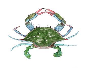 Blue Crab Watercolor Print
