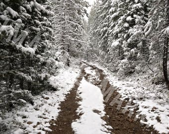 Path Through The Storm Digital File