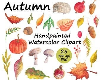 Autumn Handpainted Watercolor Clipart with Pumpkin, Pomegranate, Hedgehog, Autumn Leaves, Fall Watercolor Clipart