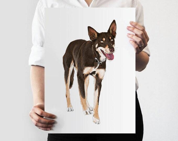 Pet Portrait COLOUR