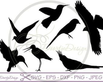 SVG Birds in vector, SVG cut files, svg files Birds, scrapbook supplies, Vector Files, Clip Art, svg files, DXF files
