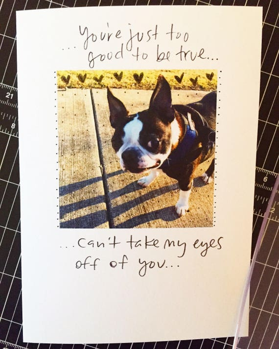 Can't take my eyes off you, One Year Anniversary Card for wife, Paper Anniversary, dog anniversary card, 365 days, 1st wedding anniversary,