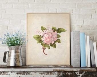 Pink Hydrangea Flower, Pink Flower Canvas, Pink Flower on Canvas, Nature Canvas, Vintage Nature Canvas, Vintage Wall Decor, Vintage Wall Art