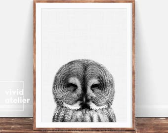 Owl Print, Nursery Wall Art, Nursery Decor, Woodlands Animal Print, Forest Animal Printable, Baby Woodland Decor, Wilderness Wall Art Print
