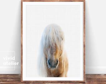 Modern Horse Print, Horse Photography, Equestrian Art, Horse Wall Art Printable, Farm Animal Print, Nursery Animal Photo, Woodlands Poster
