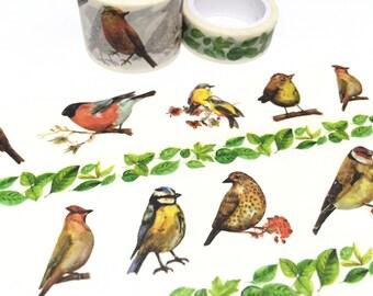 wild birds washi masking tape 5M x 3cm bird themed rare bird national bird big bird yellow bird blue bird deco sticker planner tape gift