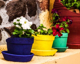 Flower Pots - Fine Art Photography Print - Kitchen Wall Art - Kitchen Decor - Wall Art - Home Decor - Yellow - Colourful Pots - 0175