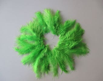 20 lime green feathers height between 10/15 cm.