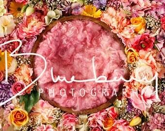 Digital backdrop newborn pink flower bowl