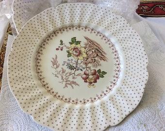"""Royal Doulton Grantham 10 1/4"""" Dinner Plate"""