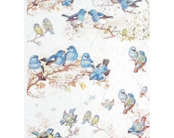 1 sheet of rice paper 21 x 28 cm decoupage collage birds 654