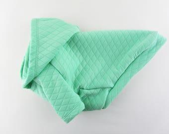 Light Green Raglan Sleeves Dog Hoodie, Dog Clothing, Dog Apparel, XS - 3XL