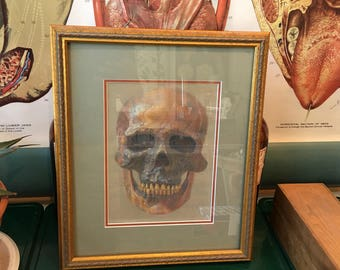 Work depicting a human skull made by an unknown artist
