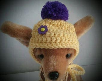 Small Dog hat, Chihuahua hat + Free Shipping