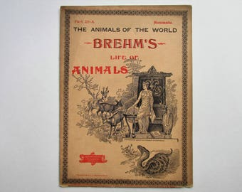 Antique 1896 Brehm's Life of Animals, Part 28-A, Illustrated, 1890's Booklet, Marquis & Company, The Cloven-Hoofed Animals: Camels, Llama