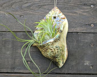 Ceramic wall pocket, succulent planter, air plant holder, wall planter, hanging planter