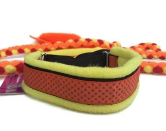 Dog agility customized slip leash yellow orange braided embroidered dog lead