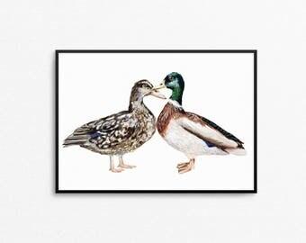 A4 Ducks Print