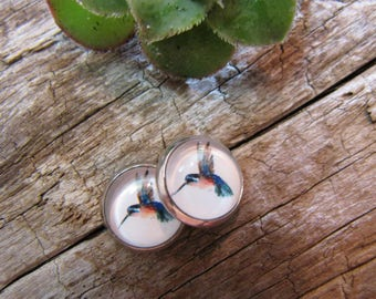 Earrings, cabochon, round, 10 mm, 12 mm, 14 mm stainless steel, Hummingbird, sparrow