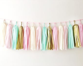 Pink Mint Gold Tassel Garland Wild One Birthday Backdrop Fully Assembled Tassel Garland Cake Smash Banner Paper Tissue Tassel Garland