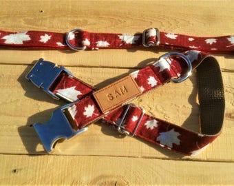 Leafs collar, Canada day collar, Canadian, Canada 150, dog collar, personalized dog collar, metal buckle collar, maple leafs collar