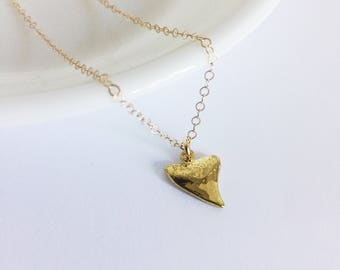 Tiny Shark tooth necklace Gold Shark Tooth Jewelry Gift for Girlfriend Surfer Necklace Surfer Girl Ocean Jewelry Beach Jewelry Tropical