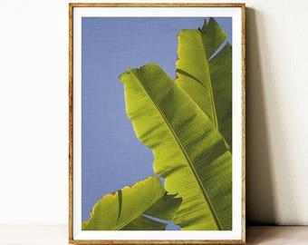 Banana leaf printable art, tropical wall art poster, instant download tropical leaf print, botanical printable poster, blue background,
